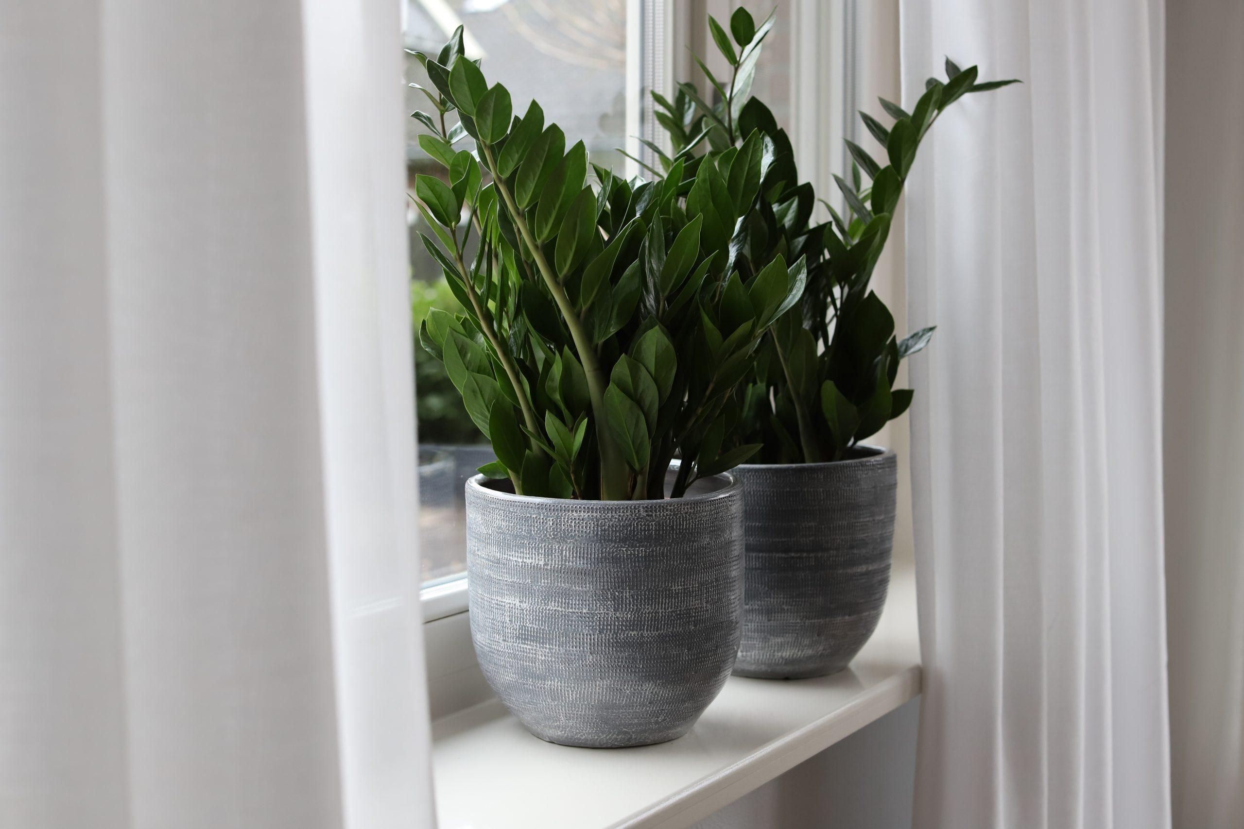 Bekijk hier de potten en vazen in lood en grijs uit de Stockholm serie